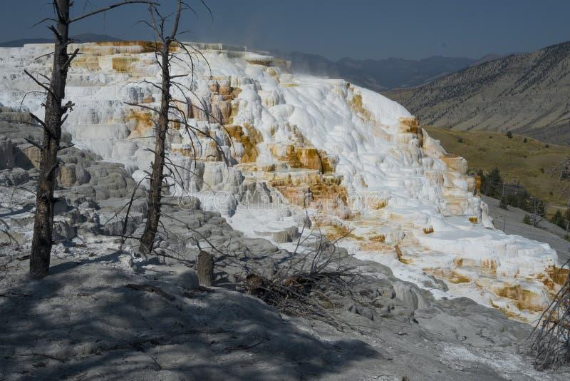 马默斯斯普林斯大阳台喷泉岩层,黄石国家公园 免版税库存图片