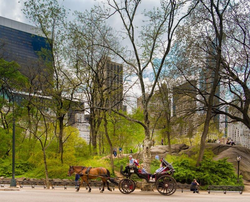 马,支架,中央公园纽约 免版税库存照片