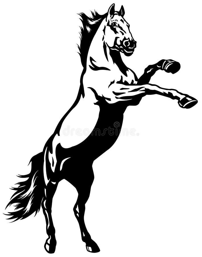 饲养野马 向量例证