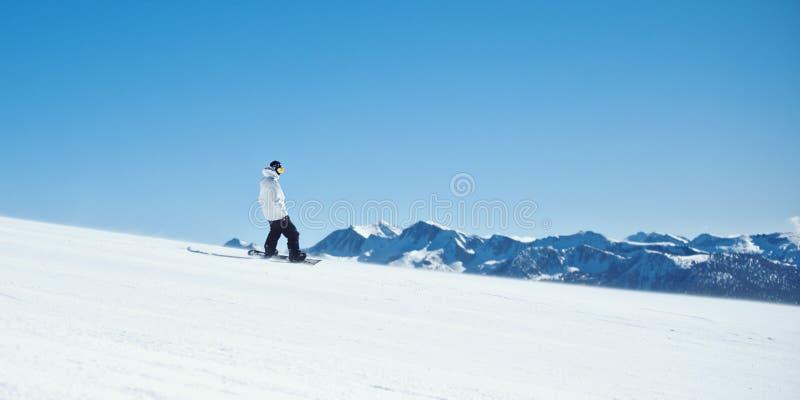 马默斯Mountain挡雪板 免版税库存图片