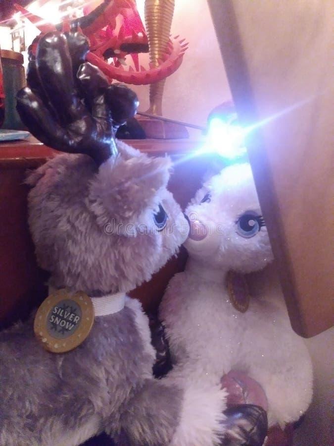 驯鹿亲吻 免版税库存图片