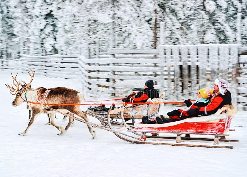 驯鹿雪橇的人们在雪森林罗瓦涅米芬兰拉普兰里 库存照片