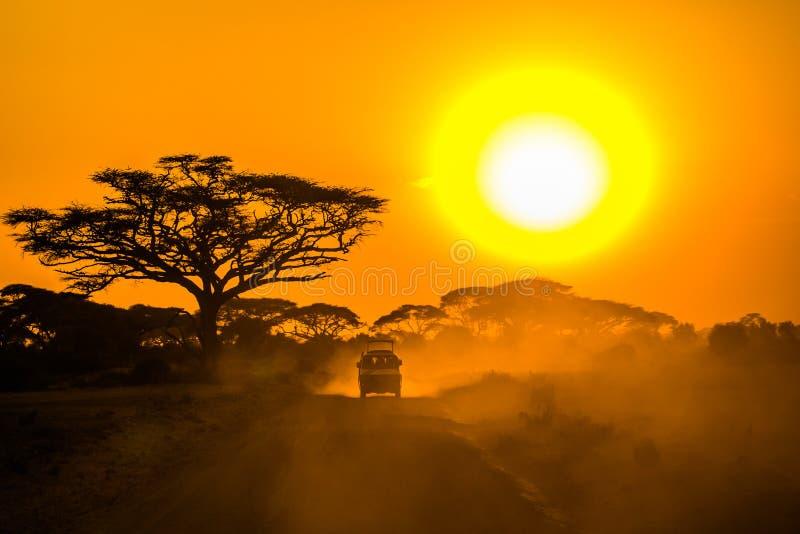 驱动通过在日落的大草原的徒步旅行队吉普 免版税库存照片
