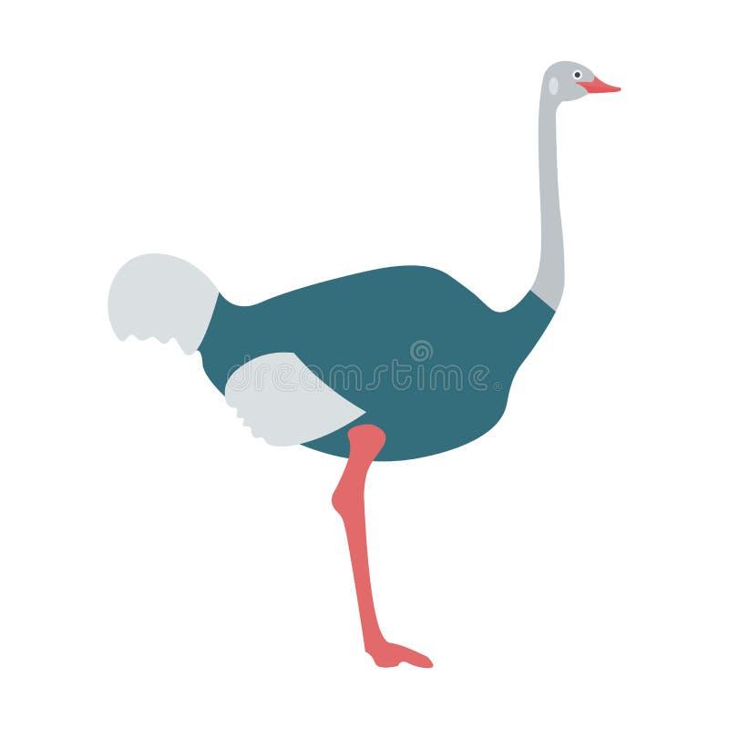 驼鸟鸟平的传染媒介例证 驼鸟在白色背景隔绝的澳大利亚鸟 驼鸟平的样式传染媒介 皇族释放例证