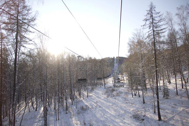 驾空滑车森林在冬天 免版税库存图片