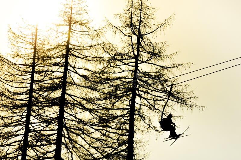 驾空滑车的滑雪者 库存图片