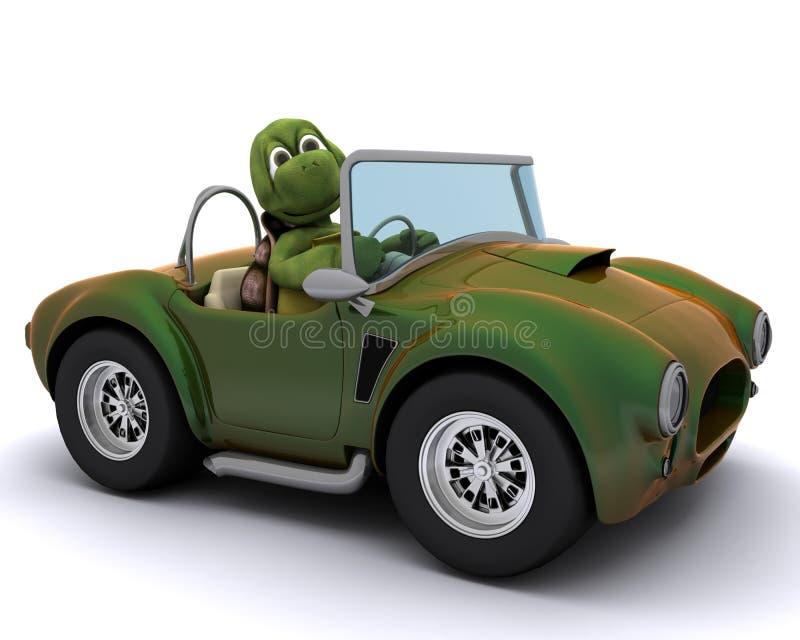 驾车草龟 库存例证