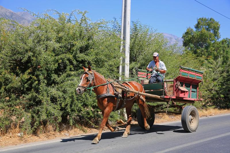 驾驶五颜六色的用马拉的推车的智利农夫 库存图片