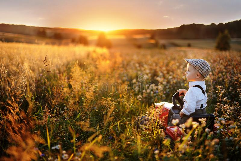 驾驶在领域的男孩农夫小拖拉机通过夏天五谷在日落 免版税库存照片