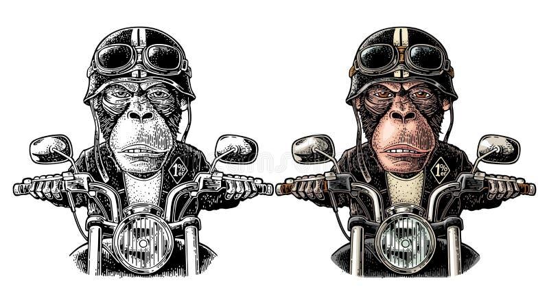 驾驶摩托车乘驾的猴子 传染媒介葡萄酒板刻 皇族释放例证