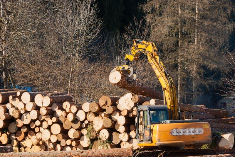 驾驶机械夹子的砍木柴者运载一根大树干 免版税库存照片