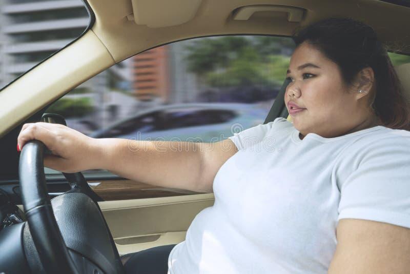 驾驶汽车的肥胖妇女,不用安全带 库存照片