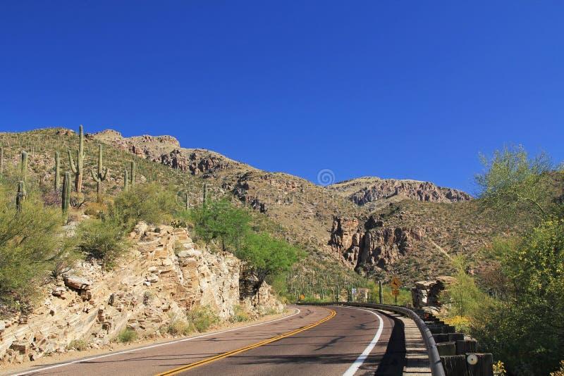 驾驶登上Lemmon在图森亚利桑那 库存图片