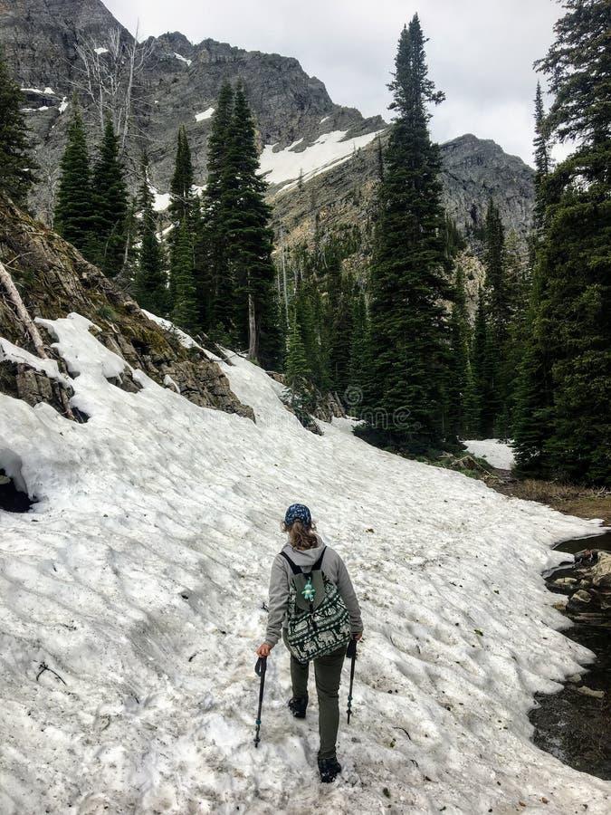 驾驶落矶山的森林、落矶山脉地形和积雪的谷的一个年轻女性徒步旅行者 库存图片