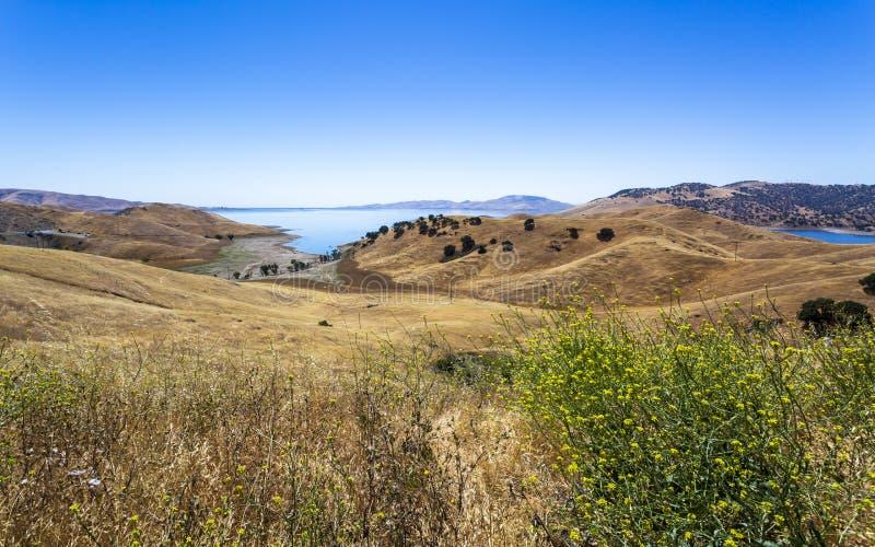 驾驶通过加利福尼亚金黄小山;圣路易斯水库状态度假区 免版税库存照片