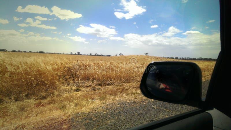 驾驶,观看风景从车,干燥小牧场、天空蔚蓝和白色可浮起的云彩 库存图片