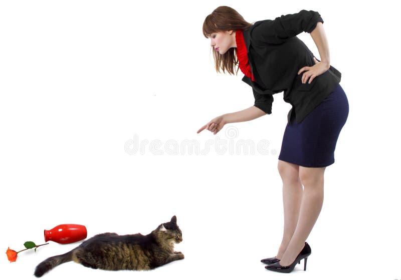 责骂猫 免版税库存照片