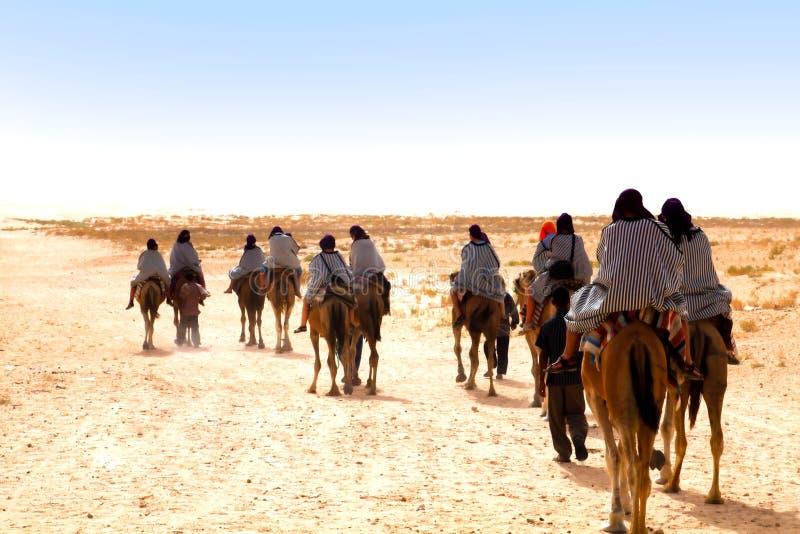 Download 骆驼人 库存照片. 图片 包括有 沙漠, 颜色, 东部, 流浪的, 反气旋, browne, 自然, 横向 - 15679082