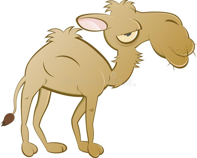骆驼动画片 库存例证