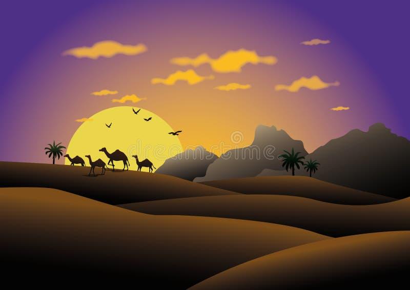 骆驼在日落沙漠 向量例证