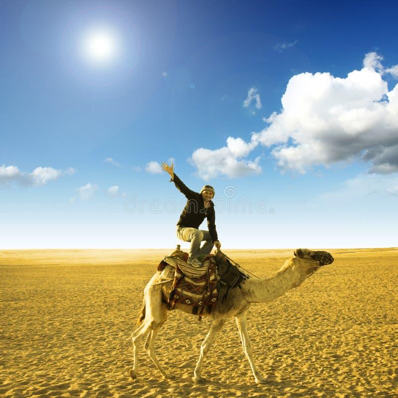 骆驼姿势 库存图片