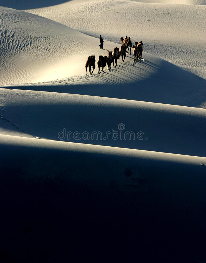 骆驼有蓬卡车剪影 库存照片