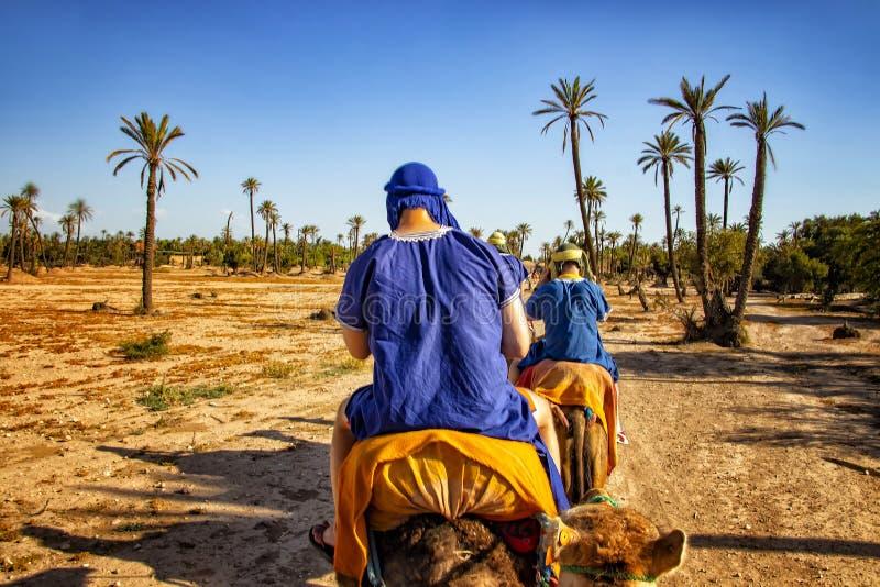 骆驼有蓬卡车在撒哈拉大沙漠,摩洛哥 蓝色穿戴的流浪的乘驾骆驼的人们在沙丘在非洲 有棕榈树 图库摄影