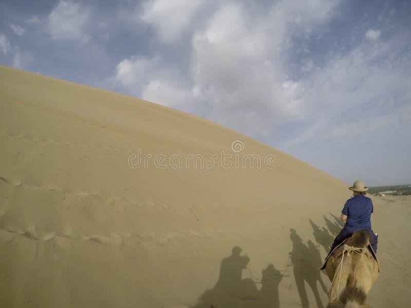 骆驼的妇女在塔克拉玛干沙漠沙漠,中国 免版税库存图片