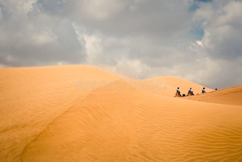 骆驼队在沙漠 免版税库存图片