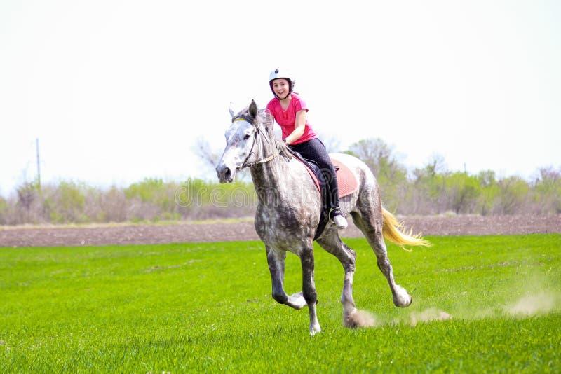 骑一匹起斑纹灰色马的盔甲的女孩在草地 免版税库存照片