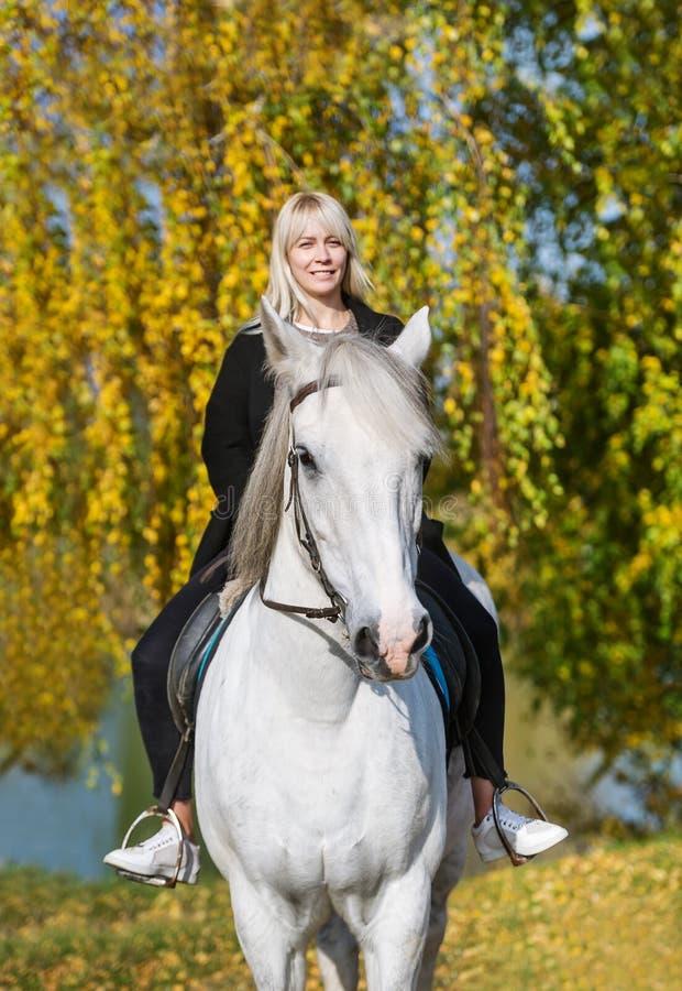 骑一匹马的年轻白肤金发的妇女在秋天森林里 库存图片