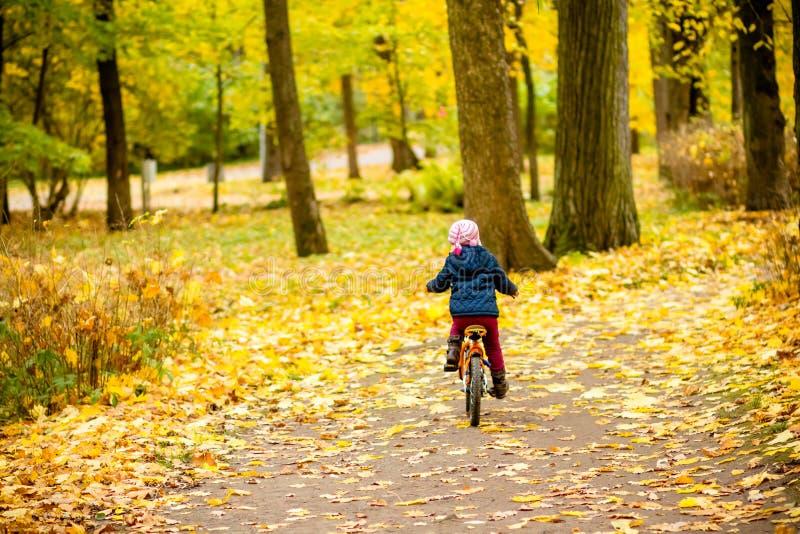 骑一辆自行车的小女孩在公园在用秋天橡木和槭树盖的路 后面观点的小孩 免版税图库摄影