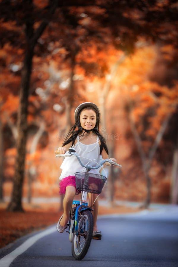 骑一辆自行车的小女孩在公园 库存图片