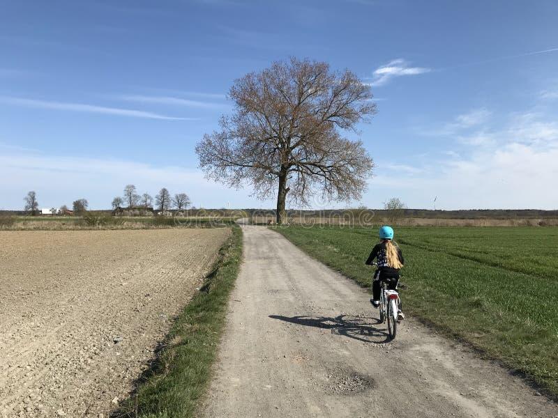骑一辆自行车的少女在波兰乡下 免版税库存照片