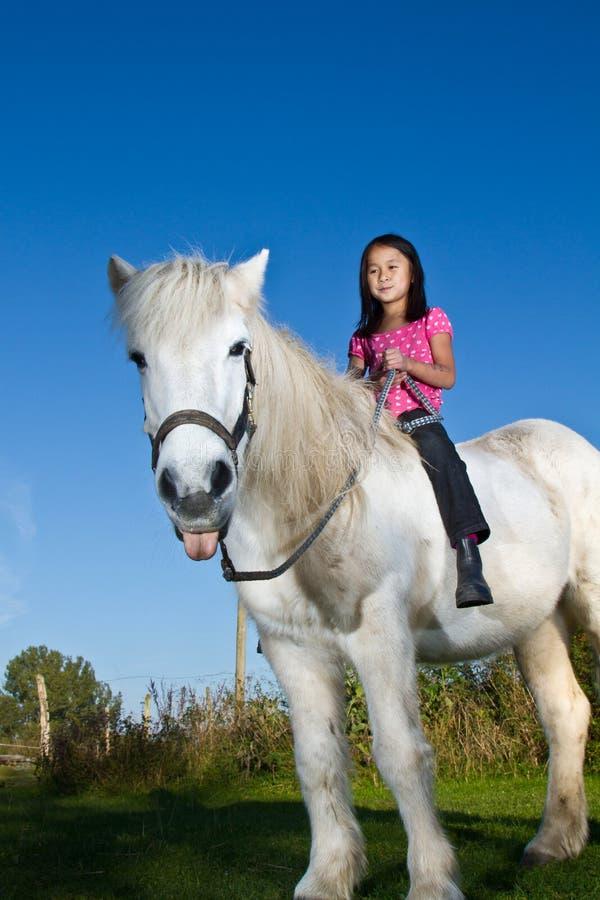骑冰岛马的女孩 库存照片