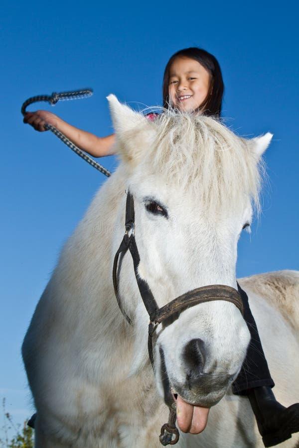 骑冰岛马的女孩 库存图片