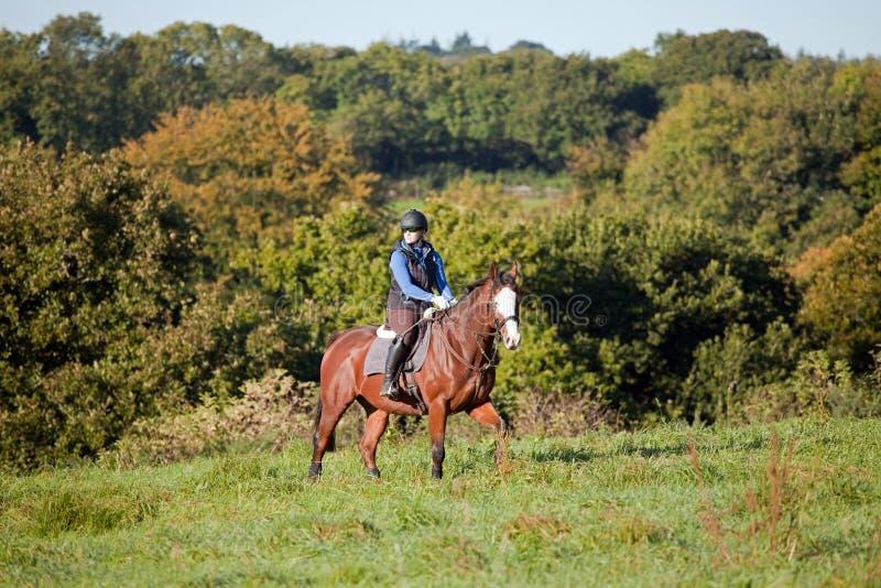 骑在开放领域的少妇一匹马 免版税库存照片