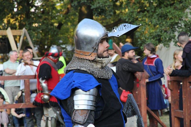 骑士中世纪纵向 库存图片