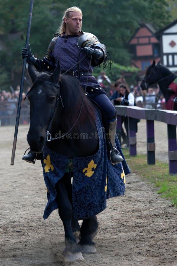 骑士被挂接 库存图片