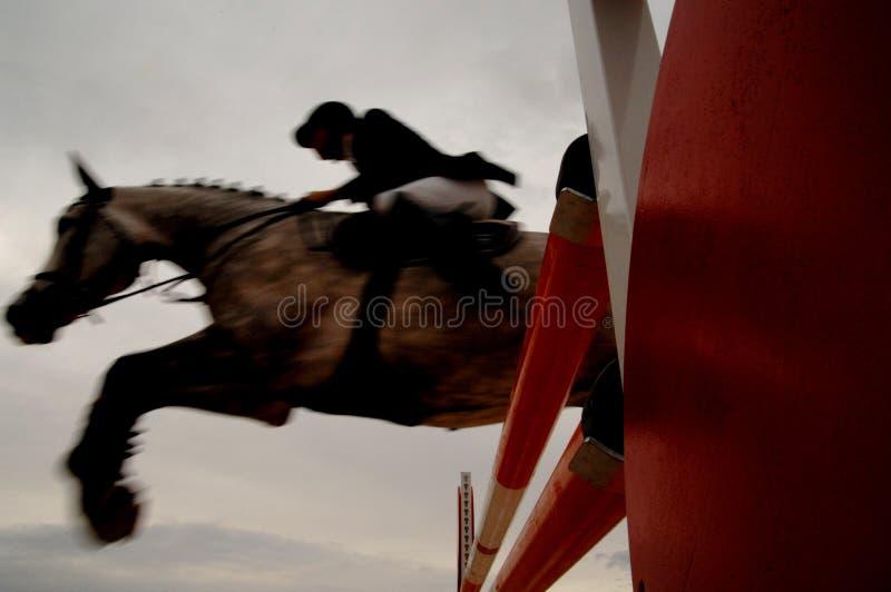 骑士跳与马的障碍 免版税库存照片