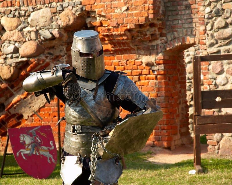 骑士 免版税库存照片