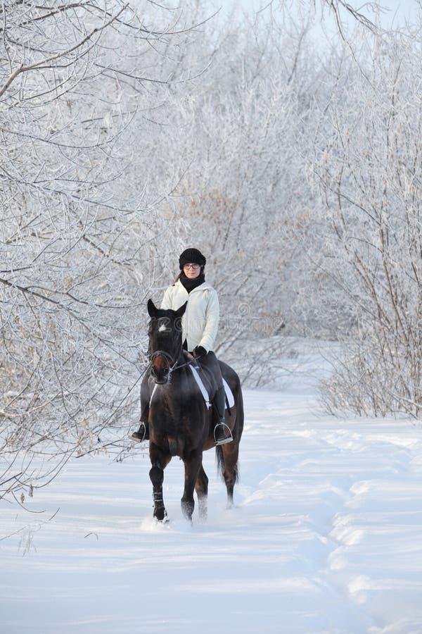 骑她的马的秀丽女孩通过雪原 图库摄影