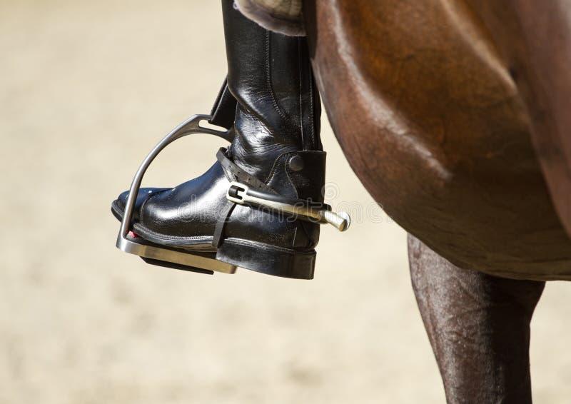 骑师马靴 免版税图库摄影