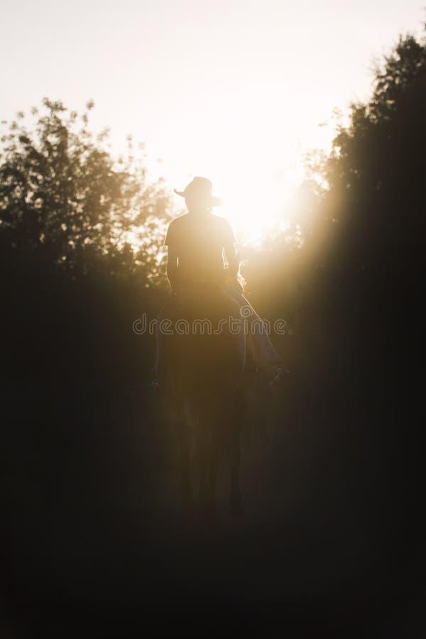 骑师-骑马的妇女的剪影-日落或日出-垂直 库存照片