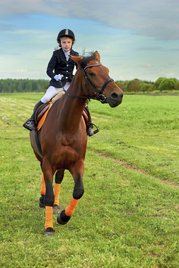 骑横跨国家的小女孩骑师一匹马专业成套装备的 免版税库存图片