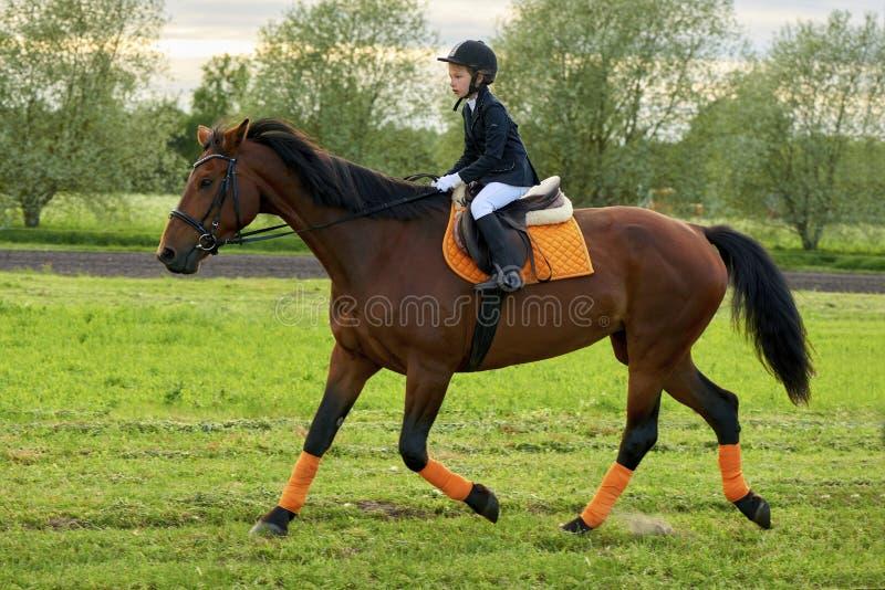 骑横跨国家的小女孩骑师一匹马专业成套装备的 免版税库存照片