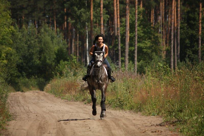 骑灰色马的美丽的妇女在森林里 免版税库存照片
