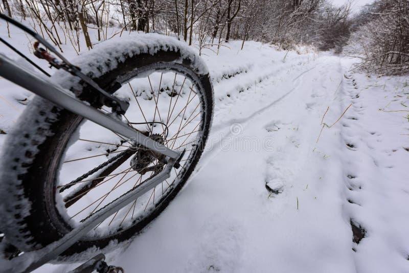 骑自行车在冬天风景的雪埋没的足迹 库存照片
