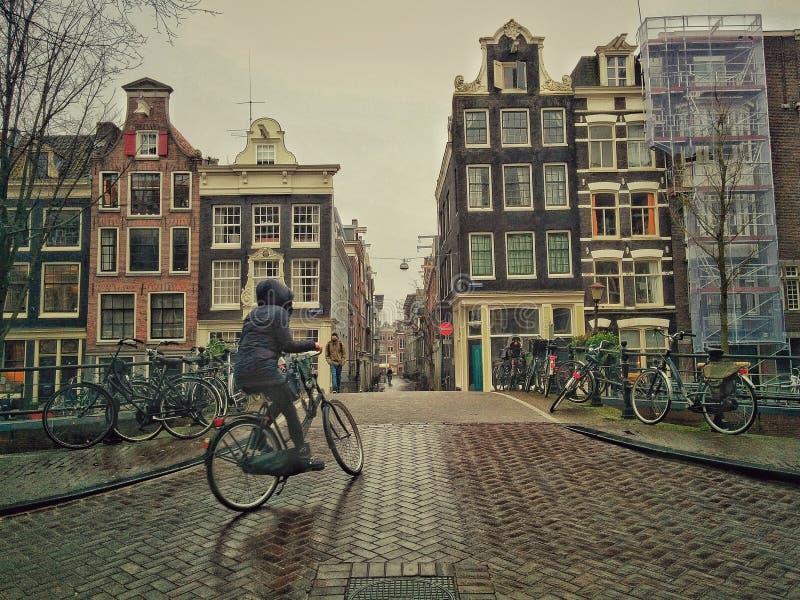 骑自行车在阿姆斯特丹的妇女 库存图片