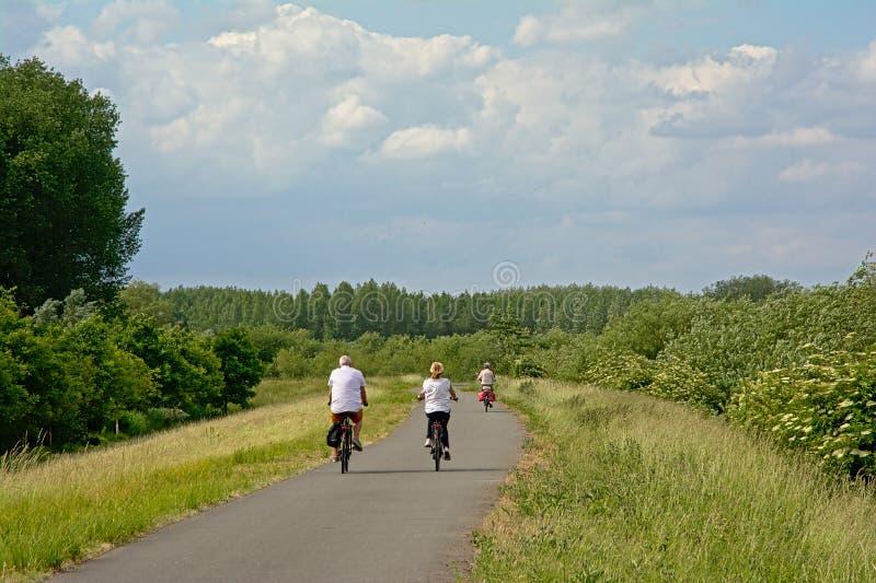 骑自行车在embankent的人们斯海尔德河河,富兰德 图库摄影